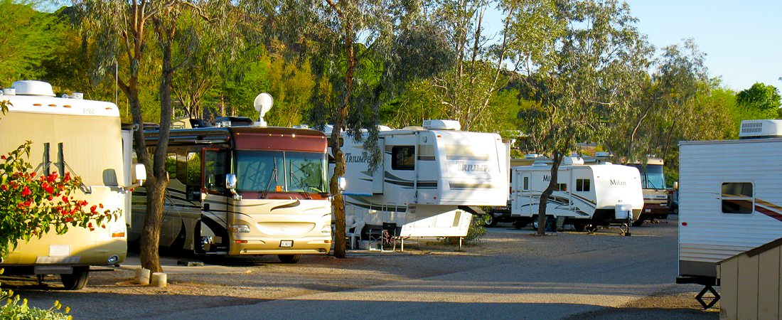 Colorado River Adventures - Shady RV camping